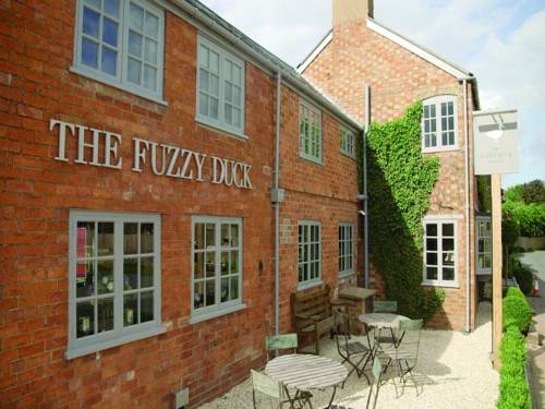 The Fuzzy Duck in Cotswolds
