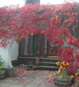 Woodlands Bed and Breakfast in Scotland