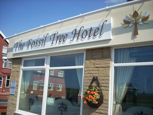 Photo of The Fossil Tree Hotel