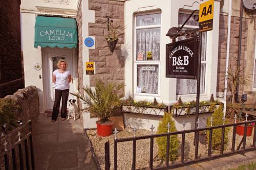 Camellia Lodge Guest House in Weston-Super-Mare
