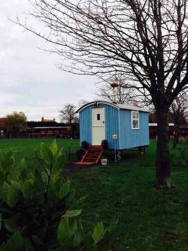 Skipbridge Farm Shepherds Hut